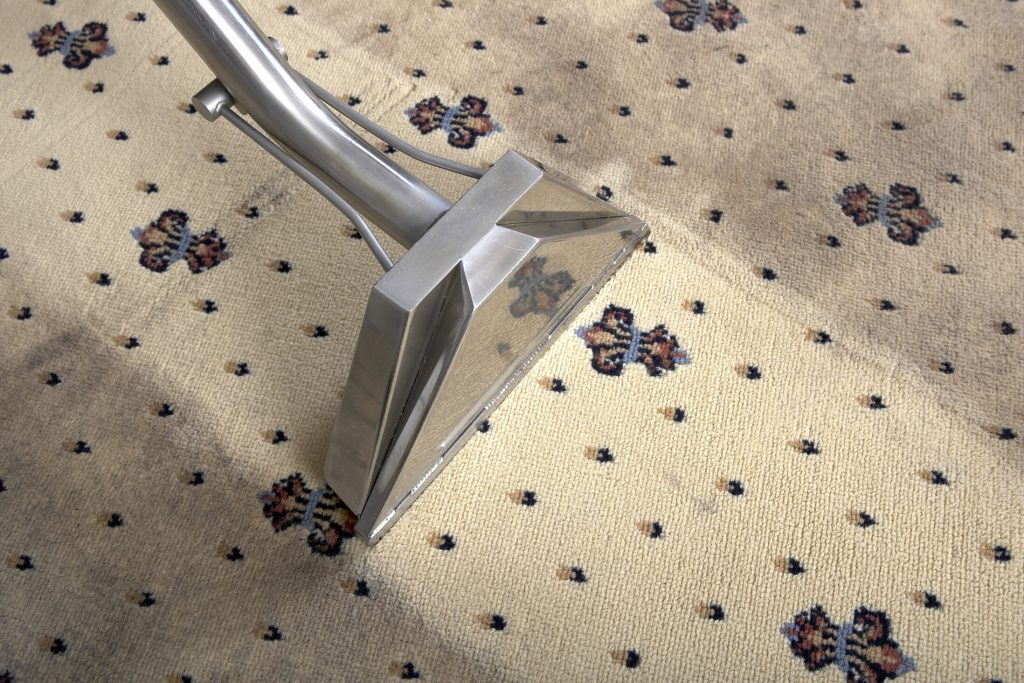 Carpet Cleaners East Rand